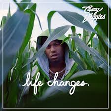 Life Changes download